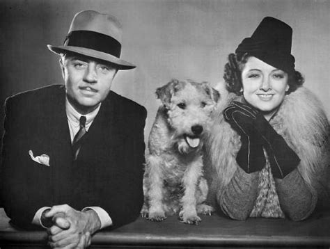 nick and noras nick and nora william powell and myrna loy and their asta from quot the thin