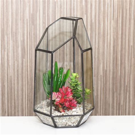 Vase Terrarium by Geometric Glass Vase Terrarium By Dingading Terrariums