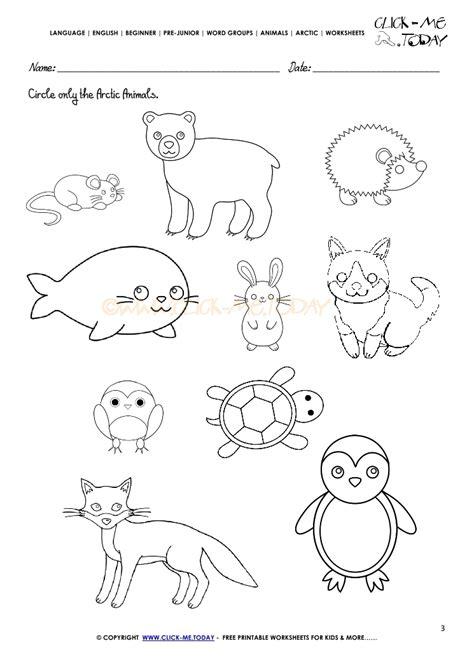 printable animal worksheets arctic animals worksheet activity sheet circle 1