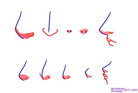 anime nose how to draw manga noses step by step anime heads anime