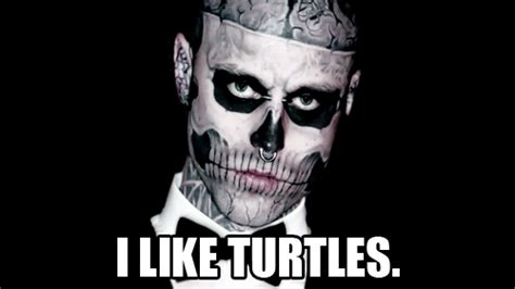 I Like Turtles Meme - image 181197 i like turtles know your meme