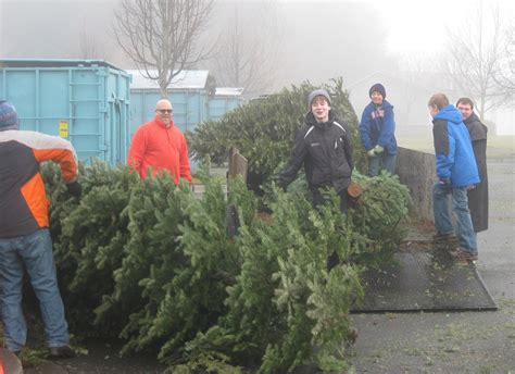 boy scouts tree recycling recycling is as easy as one two three tree