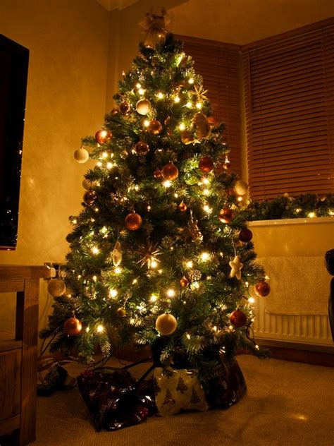 10 best images about christmas trees i like on pinterest
