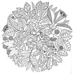 coloring for adults coloring page autumn mandala autumn 1