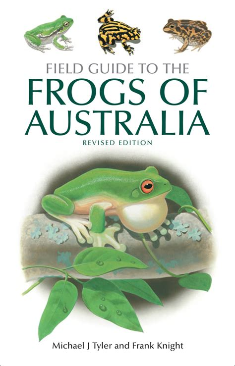 frog picture books field guide to the frogs of australia michael j