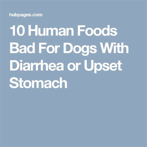 is human food bad for dogs 1000 ideas about foods bad for dogs on food for dogs dangerous foods for