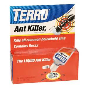 best poison spray for bed bugs borax ant killer terro