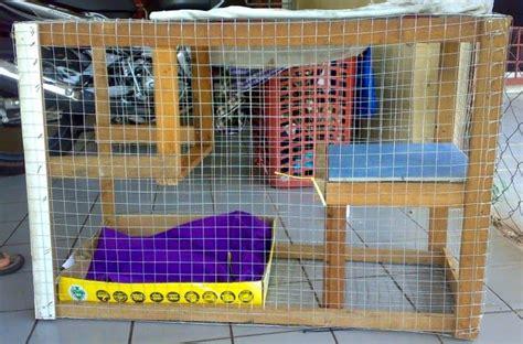 Kandang Jangkrik Burung By Nd Pets cara membuat kandang kucing sederhana beserta contoh