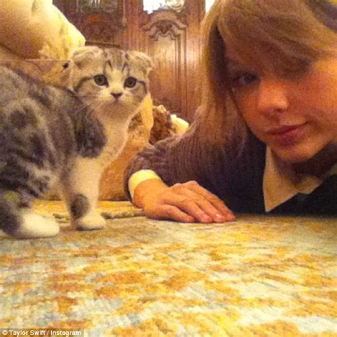 taylor swift cat advertisement taylor swift takes cat olivia benson out for a walk in nyc