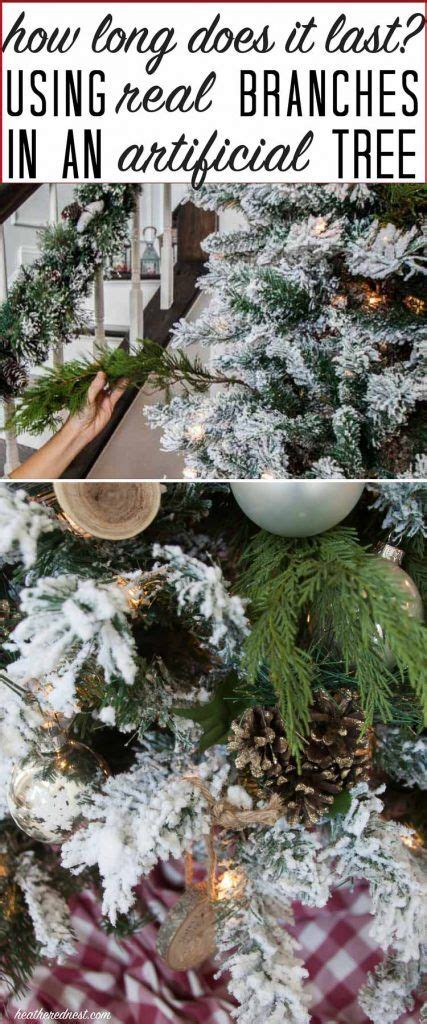 how long do real christmas trees last 6387 best images on decor crafts and deco
