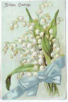 significato dei fiori mughetto il linguaggio dei fiori il mughetto paperblog