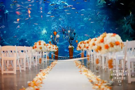Wedding Planner Seattle by Seattle Aquarium Wedding Seattle Wedding Planner