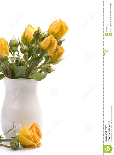 immagini di fiori gialli fiori gialli immagini stock immagine 11907134