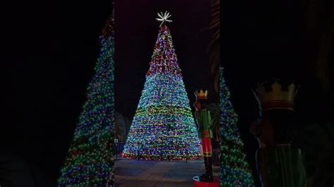 lake eola christmas tree video lake eola tree