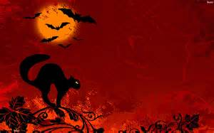 halloween cat wallpapers festival collections