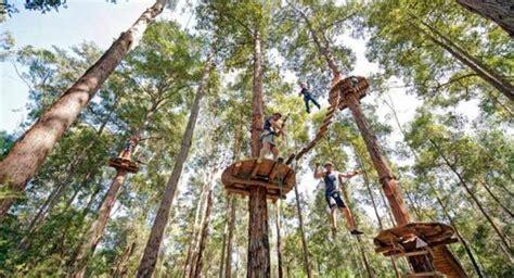Trees Top Murah 31 tempat wisata outbound di bandung terpopuler