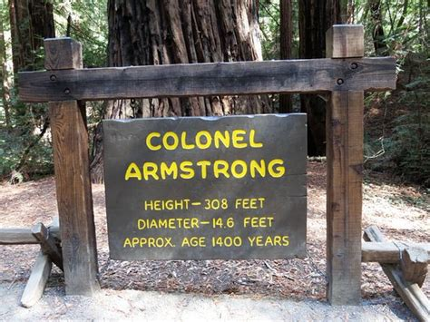 Armstrong County Assistance Office by Armstrong Redwood State Reserve Guerneville Ca What