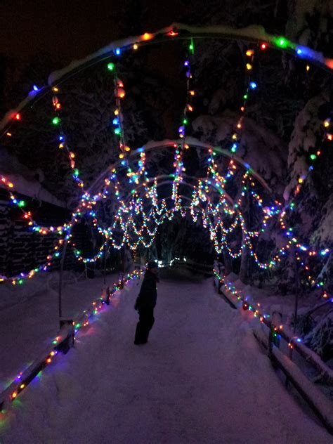 Alaska Zoo Lights Alaska Zoo Lights Up Northern Nights Ak On The Go