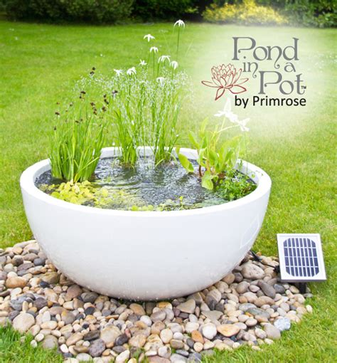 Primrose Garden Planters by Solar Powered Pond In A Pot Kit With 72cm White Planter