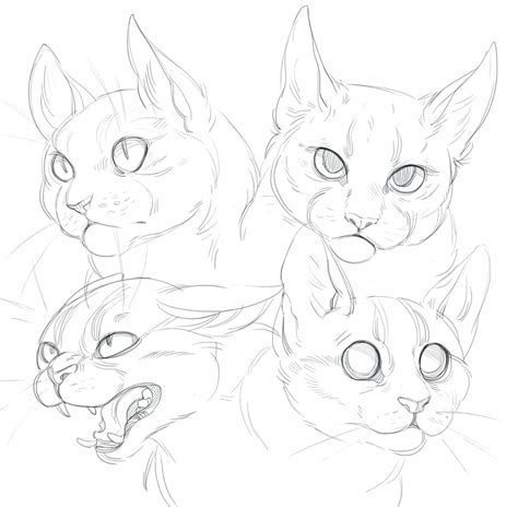 doodle cat drawings cat doodles by shade shypervert on deviantart