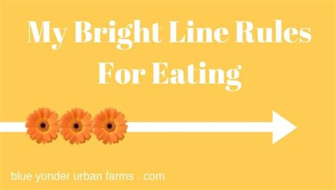bright line bright line cookbook and easy bright line recipes volume 1 books 17 best images about susan peirce thompsom food freedom