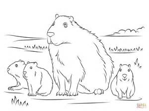 capybara with cute babies coloring page free printable