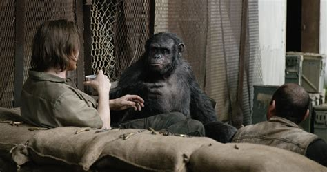 awn of the planet of the apes dawn of the planet of the apes has everything is
