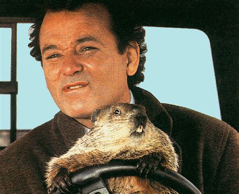 groundhog day with bill murray newsflash may not be human the family shrubbery