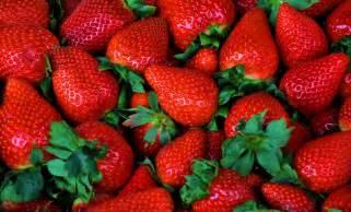 le retour des fraises mlleprune