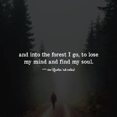 The Forest Would Be A Place Quote Best 20 Wilderness Quotes Ideas On Hiking Quotes Muir And Outdoors Quotes