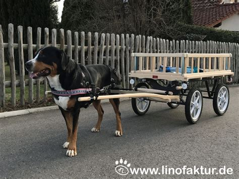 hunde wagen zughunde