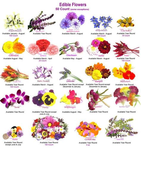 flower food without the 25 best edible flowers ideas on edible lavender flower food and flower cubes