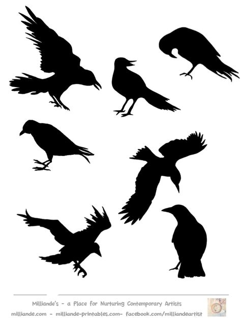 flying crows silhouette images