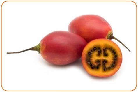 b fruit x tomate de arbol frutos de mi colombia