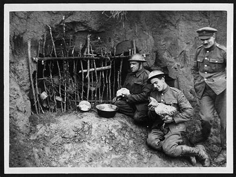 at war notes from the front lines at war blog nytimes fowl house in the trenches just behind the front line flickr
