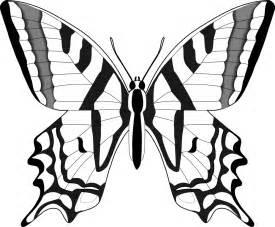 desenhos de borboletas grandes