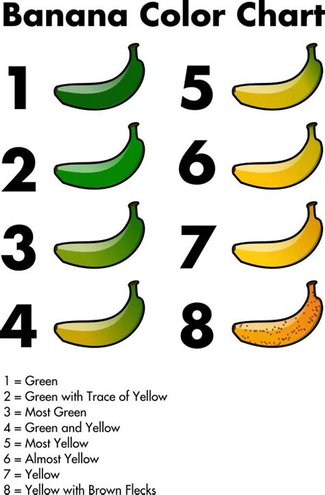 banana color chart banana color chart by jhnri4 banana