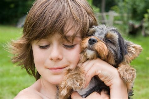 boy puppy best small breeds for families