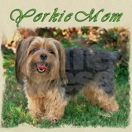 yorkie pajamas yorkie footed pajamas by tymichelfelder