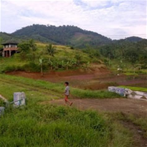 Pembuat Gundukan Tanah membuat sertifikat tanah girik atau adat kumpulan caroldoey