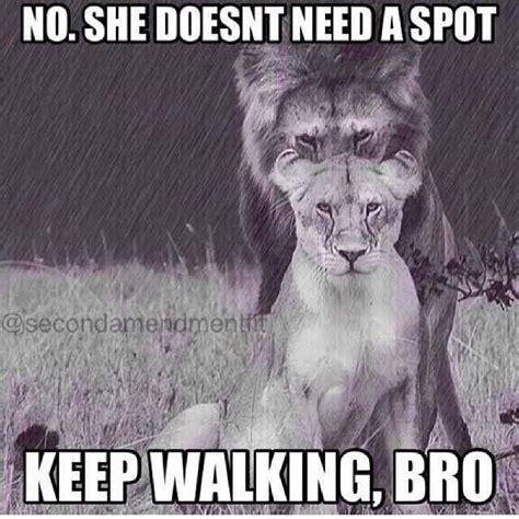Rats Ass Meme - 85 best images about lion memes on pinterest lion king