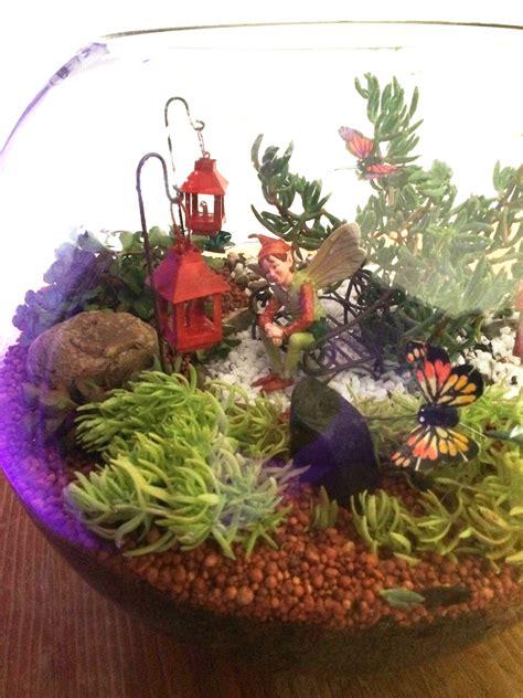 Pot Terrarium Vas Terrarium Aquarium Kaca Mini Garden Miniature 1 miniature terrarium garden in a glass fish bowl using succulents be a