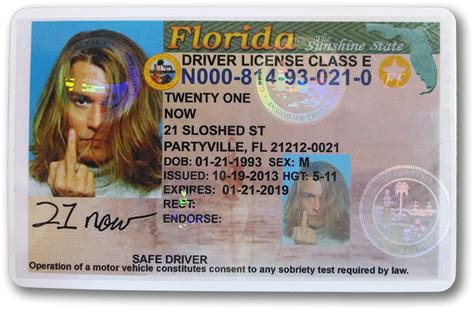 fl design school nj life style by modernstork com florida age drivers license life style by modernstork com
