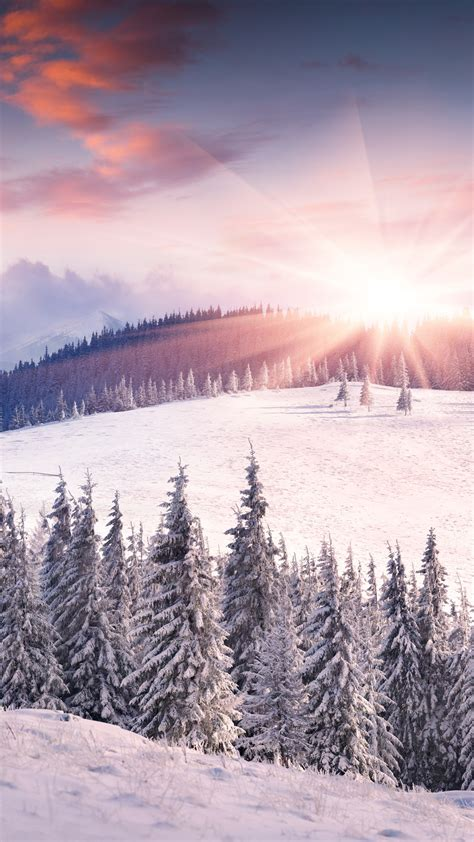 free winter wallpaper for iphone 5 dawn winter snow sun mountains trees iphone wallpaper