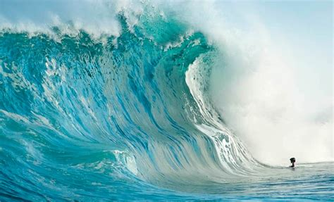 the sea within waves and the meaning of all things books inside a wave epic photography by clark forwarders
