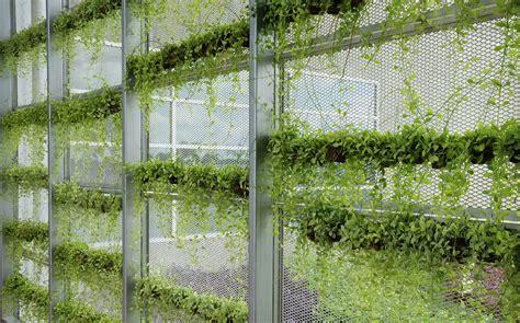 Vertical Window Garden Let S Get Vertical A Primer On Vertical Gardening