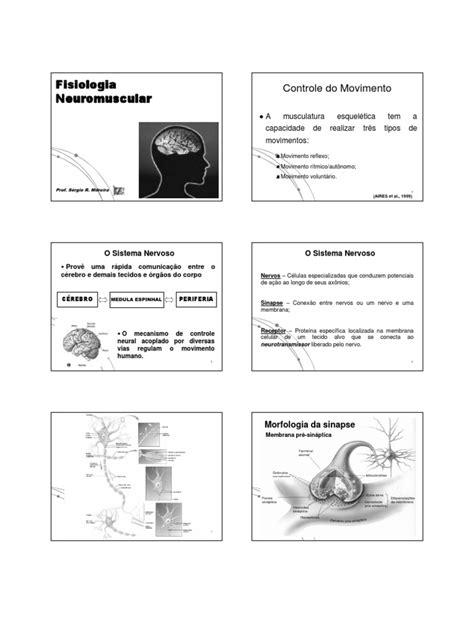 Aula 2 - Neuromuscular