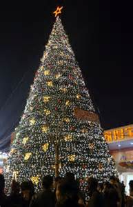 the largest christmas tree in beijing china org cn