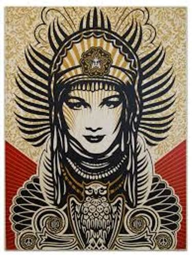 10 interesting shepard fairey facts my interesting facts