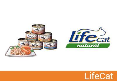 alimenti naturali per gatti lifecat alimenti esclusivamente